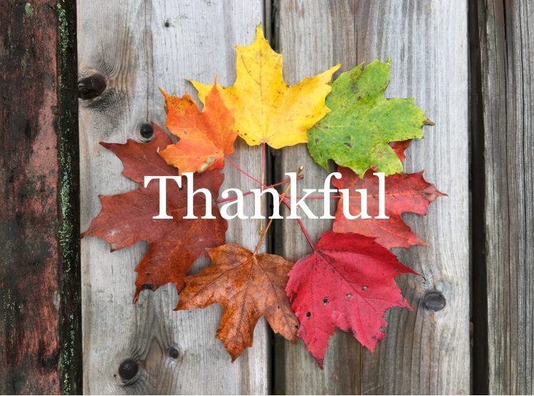 Give Thanks for the Gifts of God